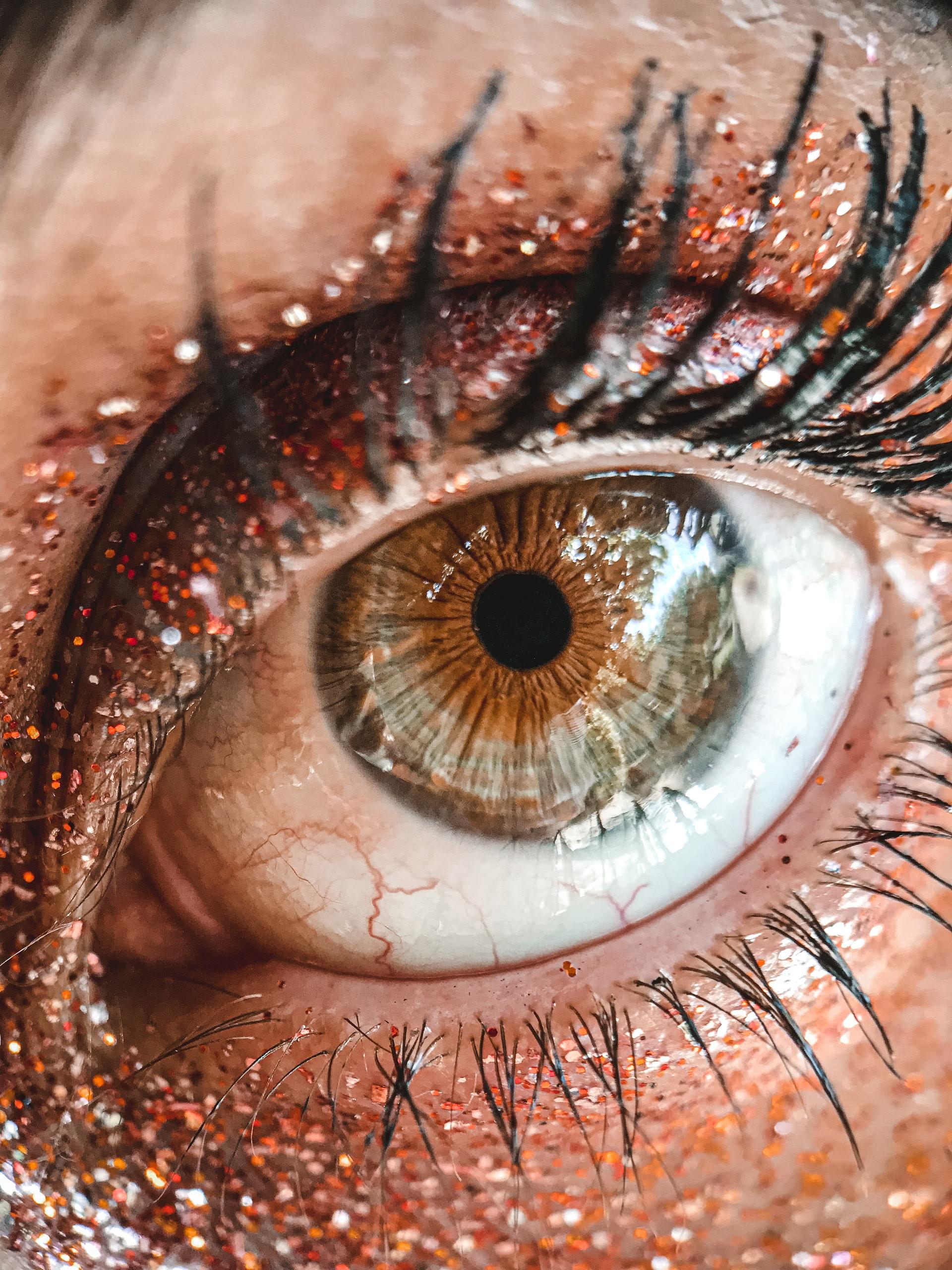 types de lentilles de vue